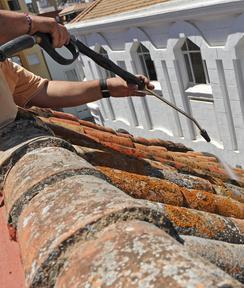 demoussage de toit